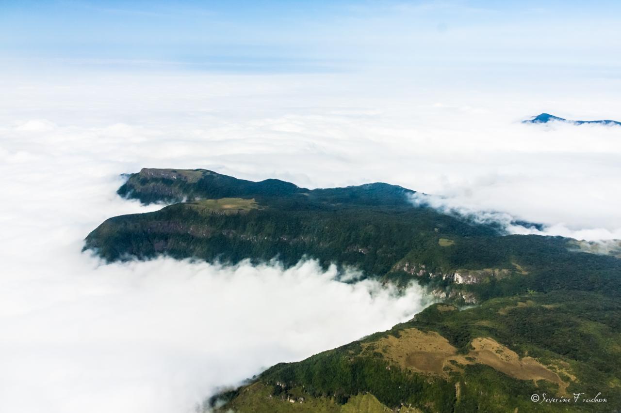 La tête au-dessus des nuages, Brésil