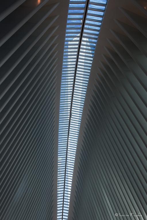 The Oculus Vs One WTC